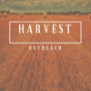Harvest Series - part 2 - primary image