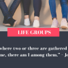 Life Groups Relaunch - primary image