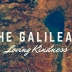 The Galilean Loving Kindness - primary image